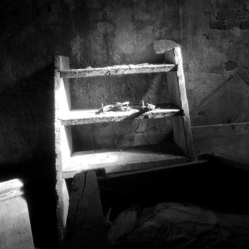 Black and white Zwart wit - Juliën van de Hoef fotografie 3