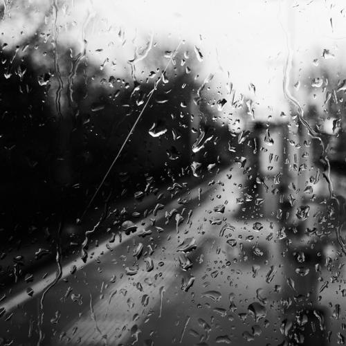 Black and white Zwart wit - Juliën van de Hoef fotografie 5
