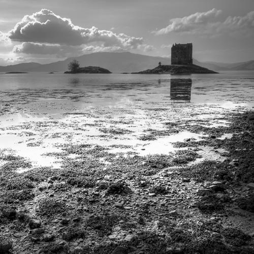 Black and white Zwart wit - Juliën van de Hoef fotografie 7