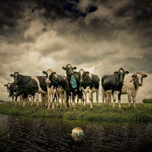 Creative Fotography-Juliën van de Hoef 27