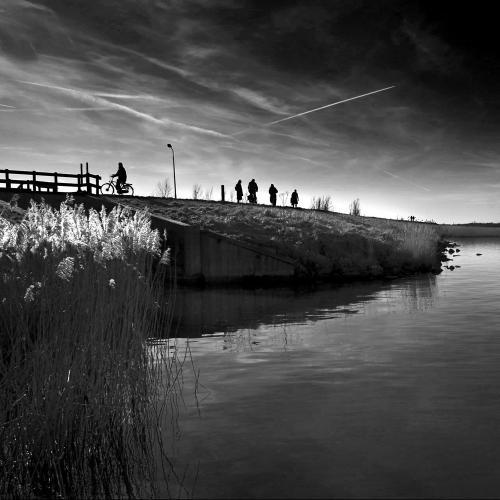Zwart wit - Juliën van de Hoef fotografie 21