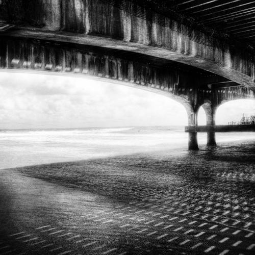 Zwart wit - Juliën van de Hoef fotografie 31