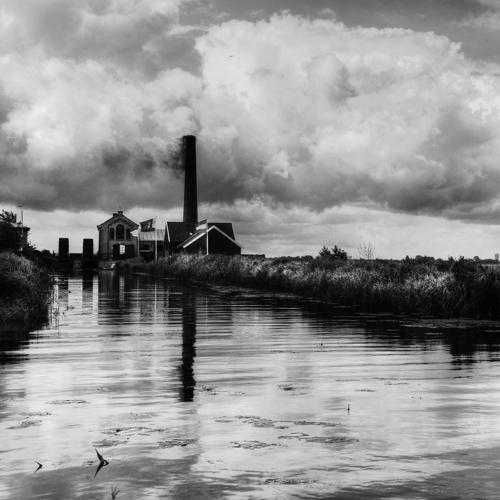 Zwart wit - Juliën van de Hoef fotografie 51