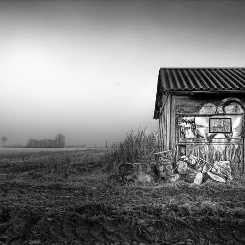 Zwart wit - Juliën van de Hoef fotografie 52