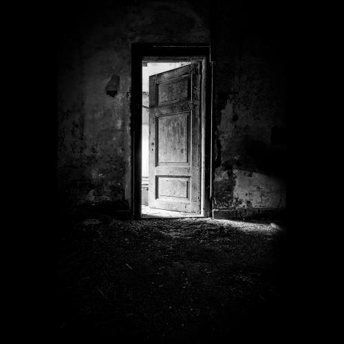 Zwart wit - Juliën van de Hoef fotografie 53