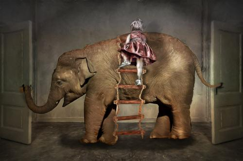def olifant-Edit_pe