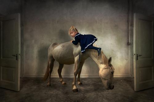 def paard-Edit_pe