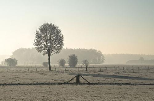 winter randmeren julien van de hoef 13