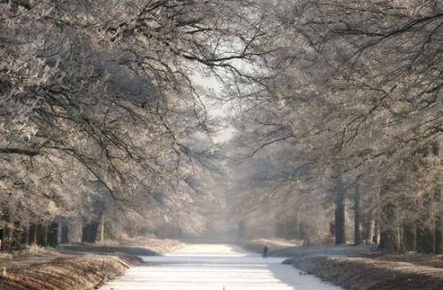 winter randmeren julien van de hoef 14