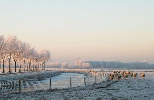 winter randmeren julien van de hoef 22