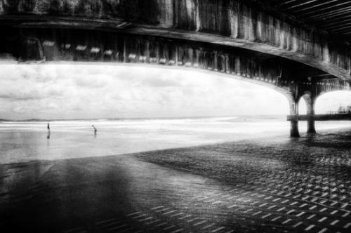 Brighton julien van de hoef 09