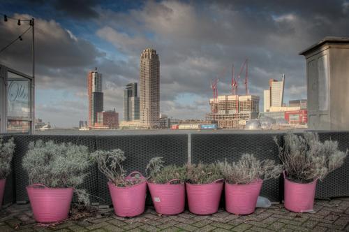 Rotterdam Juliën van de Hoef_HDR 2