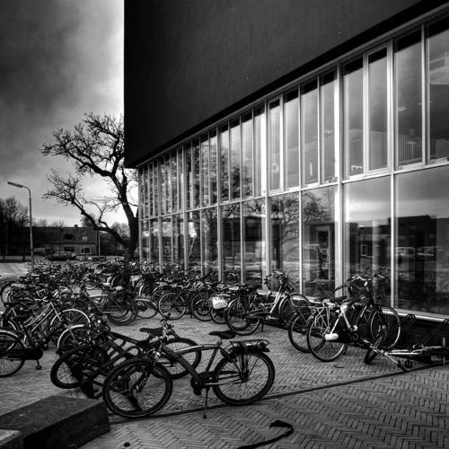 Zwart wit - Juliën van de Hoef fotografie 54