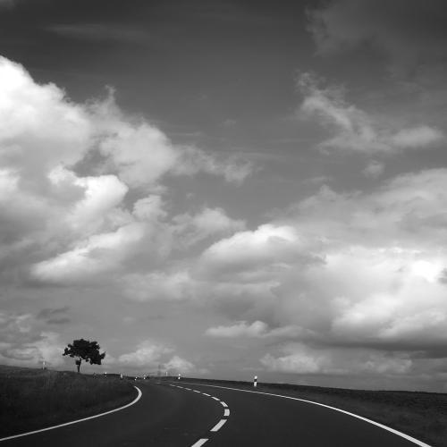 Zwart wit - Juliën van de Hoef fotografie 56