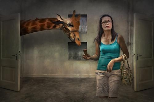 def giraf-Edit_pe