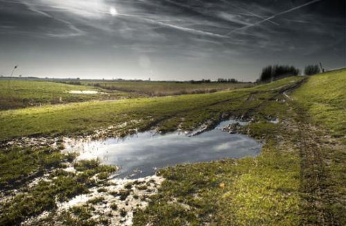 landschap julien van de hoef 08