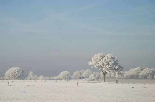 winter randmeren julien van de hoef 25